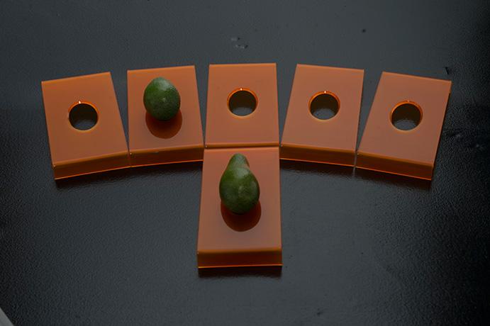 mangia-avocado-1